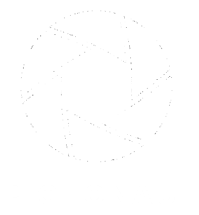 pictonaut